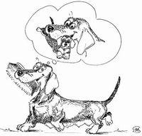 У собаки ложная